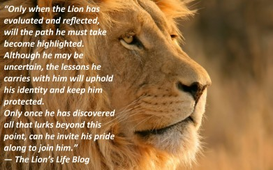 the-lions-life-blog