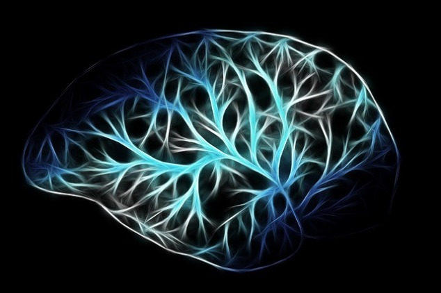 brain-2676370_640